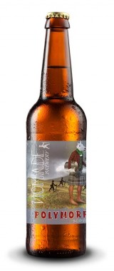"Bière ""ANPD Scotch Ale"" Nomade BIO"