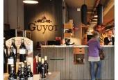 Guyot Lyon Saint Antoine